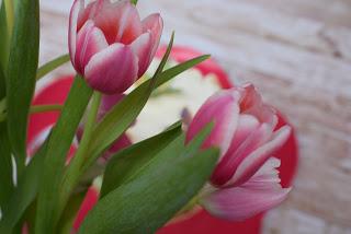 Mein Gastbeitrag bei Zuckerschnutes Backstube – Frühlingshafte Wickeltorte