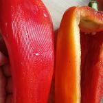 geschälte Paprika