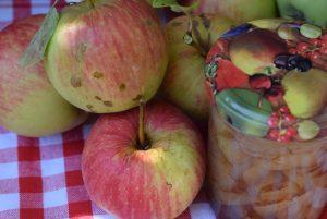 Tonka Zimt Apfel 1